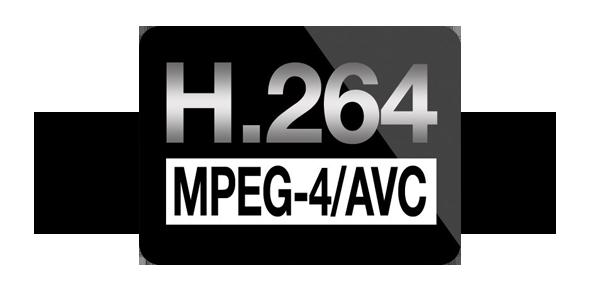 h264 logo2